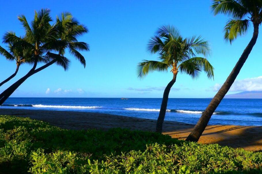 fotos de soledad en la playa