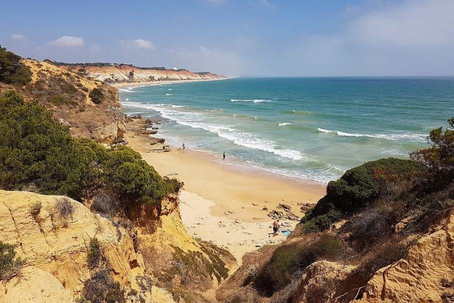 fotos de la playa de la concha